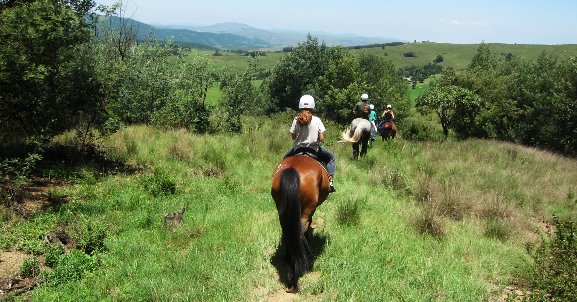 Stormy Hill Horse Trails